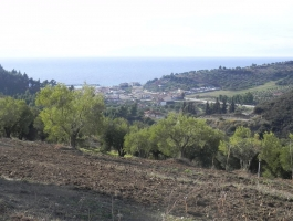 Land for sale  Halkidiki Greece