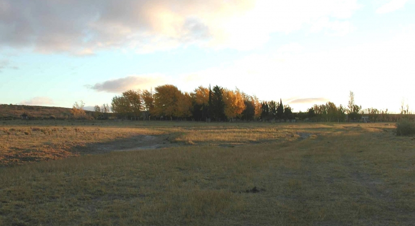 SUPER OPPORTUNITY - Very good 20,000 hectares