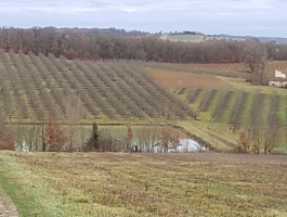 Domaine Agricole Bio