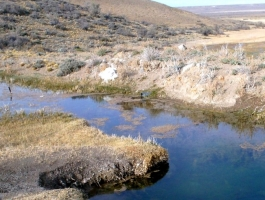 DUEÑO VENDE GRAN ESTANCIA FAMILIAR – 30000 HAS -  U$S 35/HA