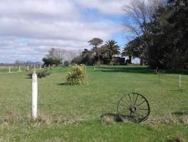 30 hectares - Balcarcea