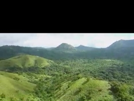 $ 33,000 Lease 81 hectares