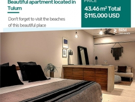 Amazing one bedroom apartment and amazing location