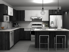 4 ½ and 5 ½ NEW, LUXURIOUS CONSTRUCTION, June, July 2020