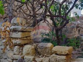ZEJTUN HOUSE OF CHARACTER WITH 70 SQM GARDEN!