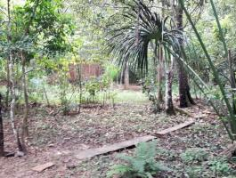 Opportunity in Pirenópolis, sale of plot with great location
