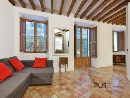 Palma. Old town. Apartment with a large roof terrace. And a look. PUR.