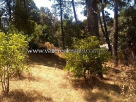 EXCELLENT LAND FOR SALE SUITABLE FOR HOUSING AND COMMERCIAL DEVELOPMENT