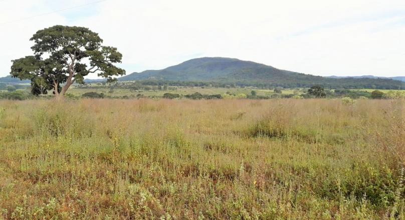 Investment opportunity in Pirenópolis, sale of land