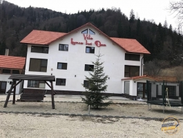 Business for sale in the Transalpina Sale Meadow Pension Dan