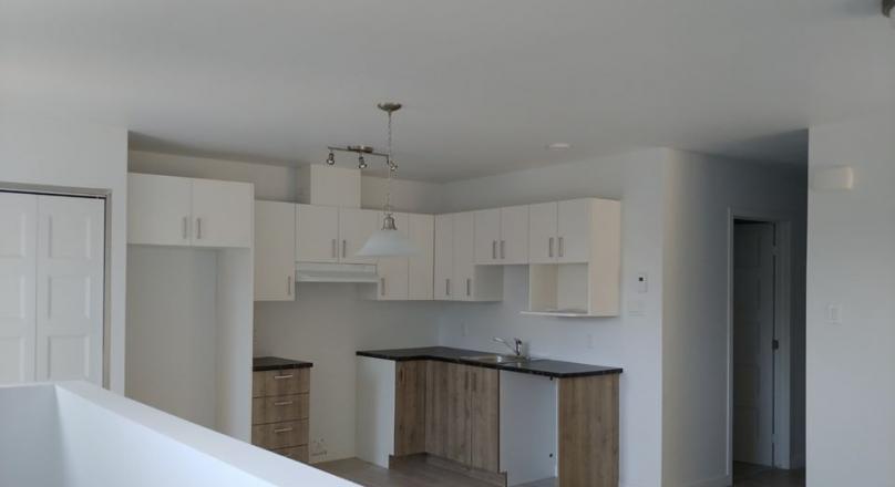 Grand logement style condo nouvelle construction