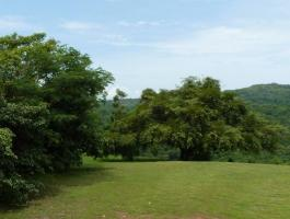BEAUTIFUL FINCA FOR SALE WITH EXCELLENT VIEW!