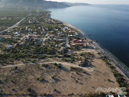 6 Has / 14.82 Acres Los Barriles BCS, Mx, Los Barriles, Baja California Sur