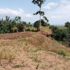 Lot for sale 15,964 area sqmtr