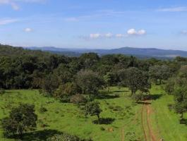 Sale of a land in Pirenópolis, with 20,000 m²