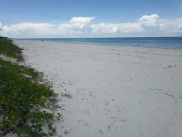 SAND BEACH PLOT FOR SALE