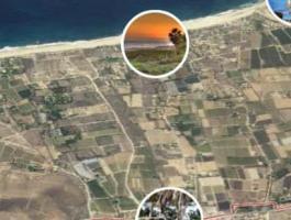 37 hectares in El Pescadero, Baja California Sur, Mexico